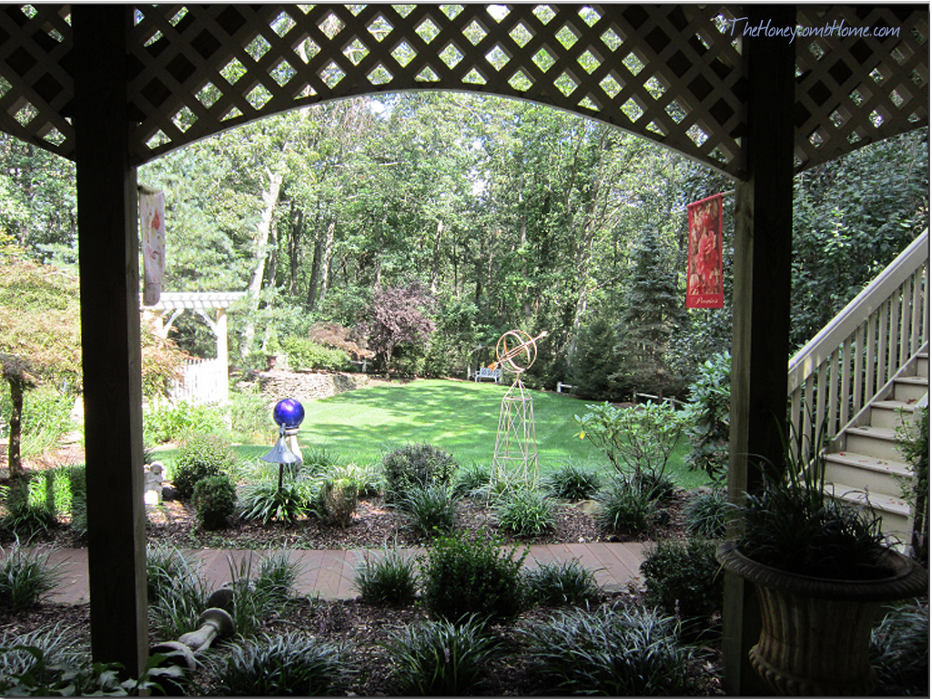 framed garden view