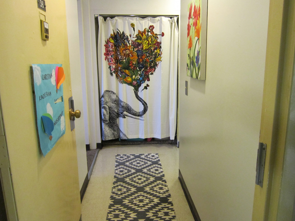 Dorm Hall Entry I Used A Shower Curtain