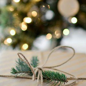 FI Decorating with christmas lights
