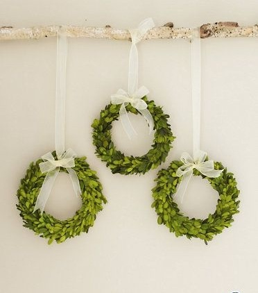 Boxwood wreath trio
