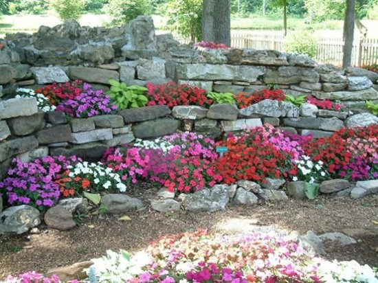 impatiens that grow well in the shade