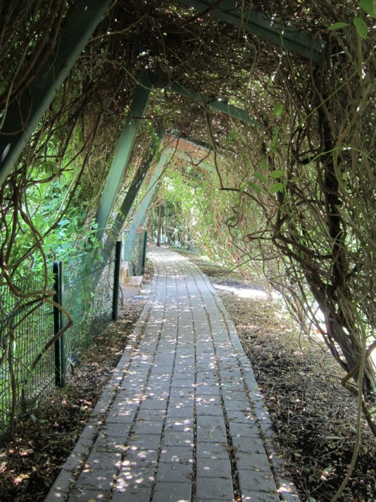 garden passageways