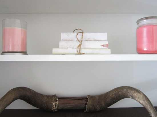 antlers and shelves