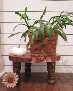 DIY Rustic Plant Stand