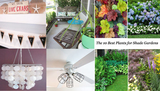 June DIY Projects the Honeycomb Home