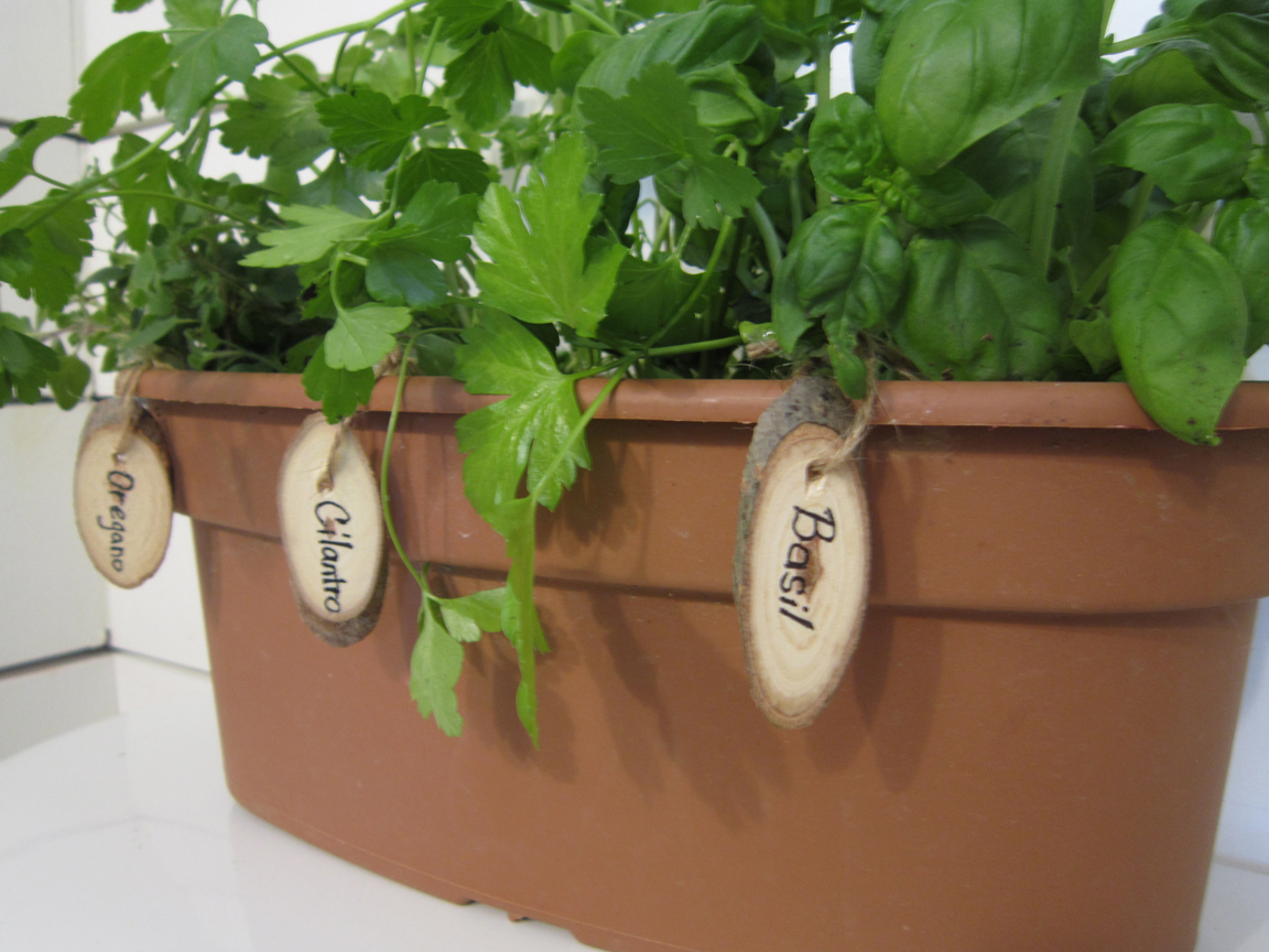 Herb Garden Markers & A Giveaway -