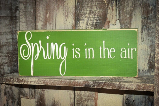 spring is in the air sign etsy