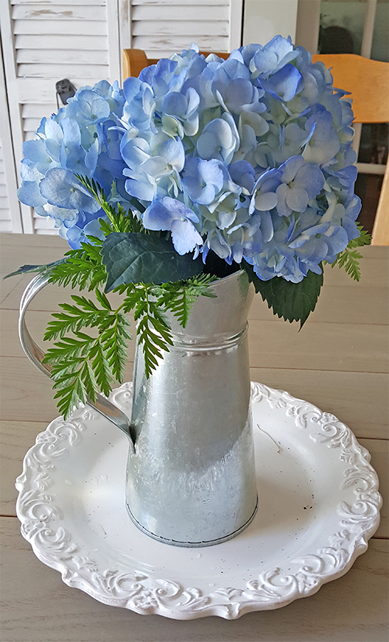 hydrangeas in galvanized pitcher
