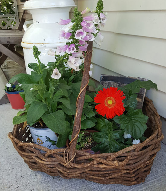 Basket of flowers-front porch
