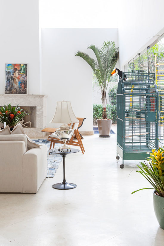 home tour for animal lovers