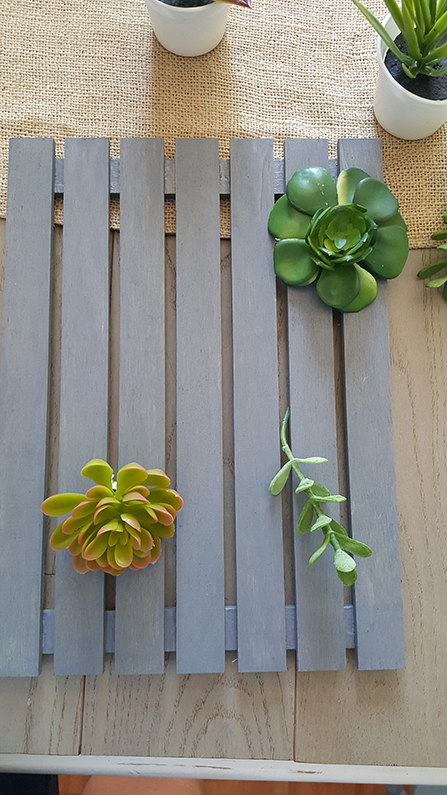 how to diy a succulent garden
