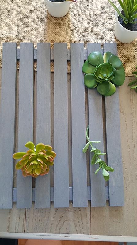 how to diy a succulent garden