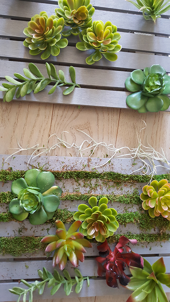 how to make a faux succulent garden
