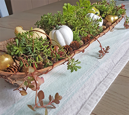 DIY Fall Centerpiece With Succulents