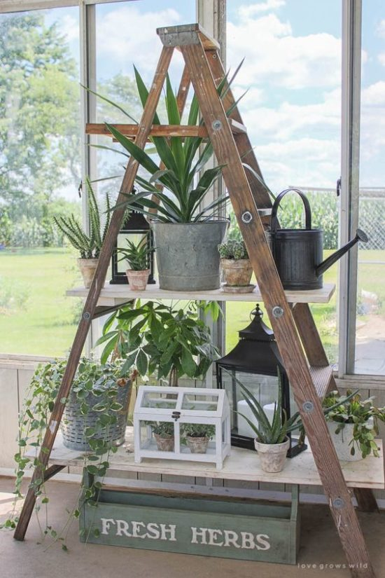 rustic ladder plant stand