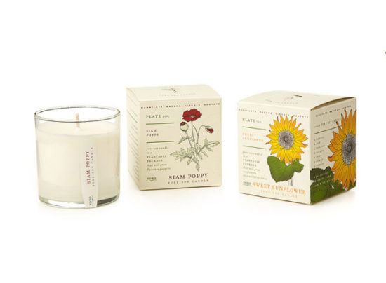 plant-the-packaging-flower-candles