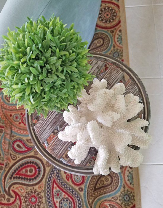coastal accent decor coral