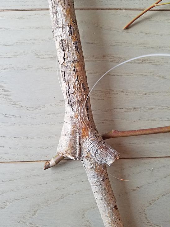 how to make a eucalyptus swag