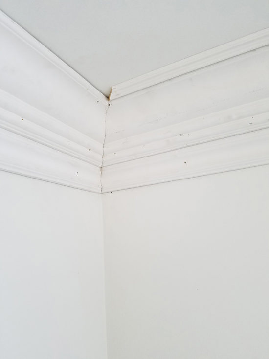 Layered Crown Molding