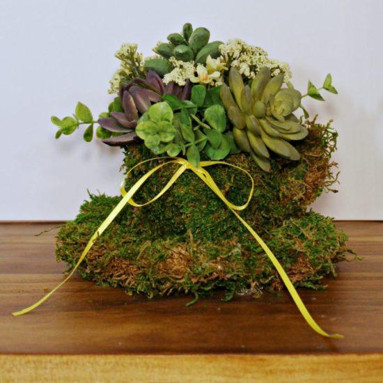 succulent-planters-ideas