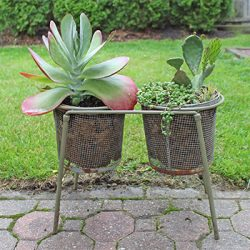 Killie pot planter idea