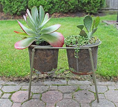 Killie pot planter idea