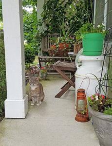 Summer Entry Porch