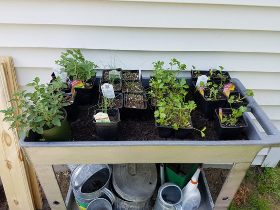 how to plant a raised herb garden, perfect for small spaces
