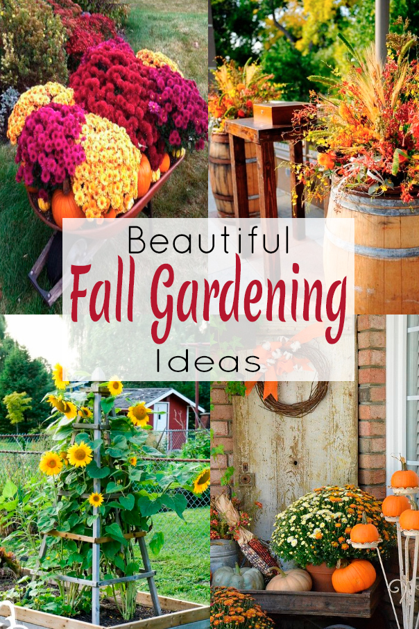Beautiful Fall Gardening Ideas