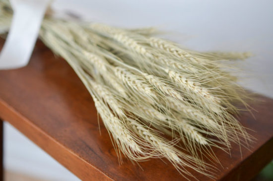 dried wheat bundle for decorating