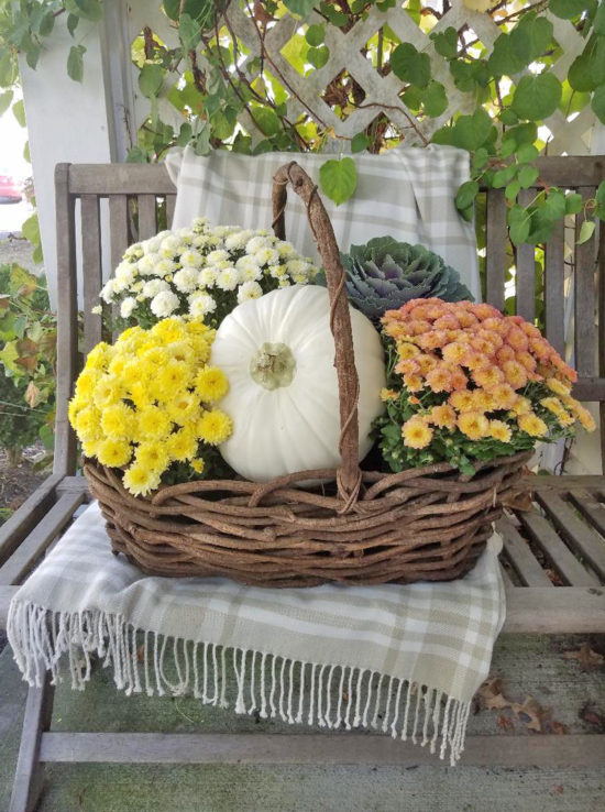 Colorful mums porch decorating ideas, front porch ideas for fall, fall front porch