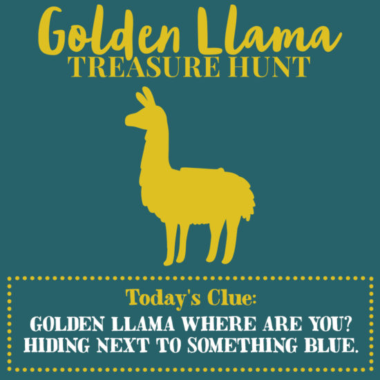 Golden Llama Treasure Hunt Clue 1 Nov 1