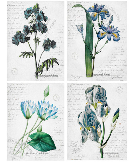 Cheap wall decor online, botanicals, cool wall art, florals