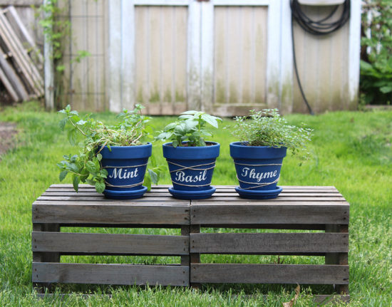 How to make these adorable herb garden pots! Herb garden ideas, Cricut projects, herb garden kit