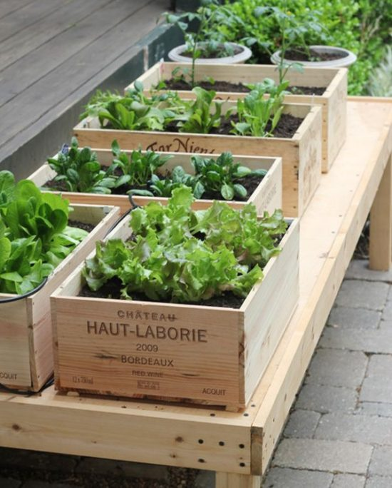 raised garden bed ideas, diy garden ideas