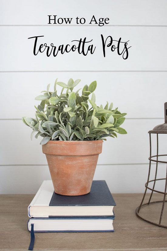 How-to-age-clay-terracotta-pots-for-a-naturally-weathered-look