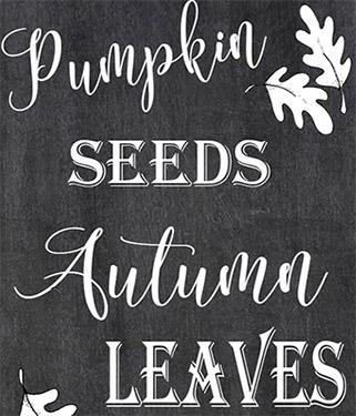 Pumpkin Printables – Free Download