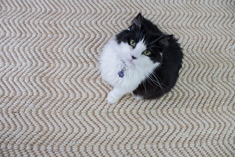 the best non slip rug pads that feel soft under jute rugs