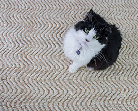 Choosing the Right Rug Pad and Why It Matters