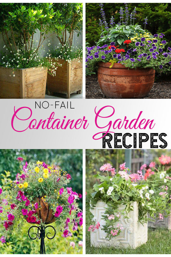 The formula to perfect container gardening every time, and a cheat sheet of which flowers work well together PIN