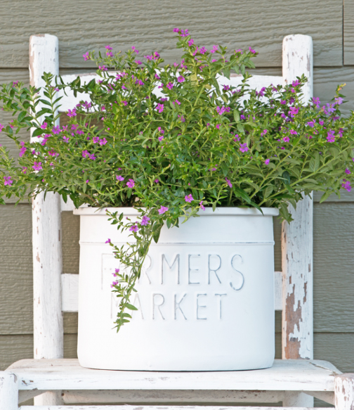 farmer's market bucket planter from Serving up Southern