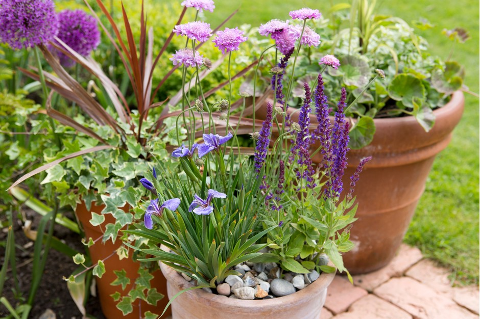 simple container garden ideas