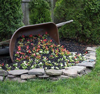 DIY Wheelbarrow Planter FI