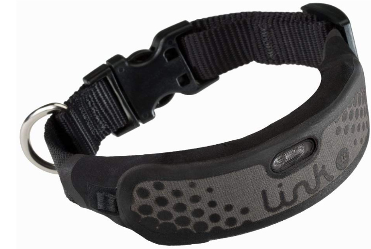 dog collar with gps tracking device