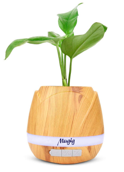 wooden flower pot that is actually a Bluetooth enable speaker!