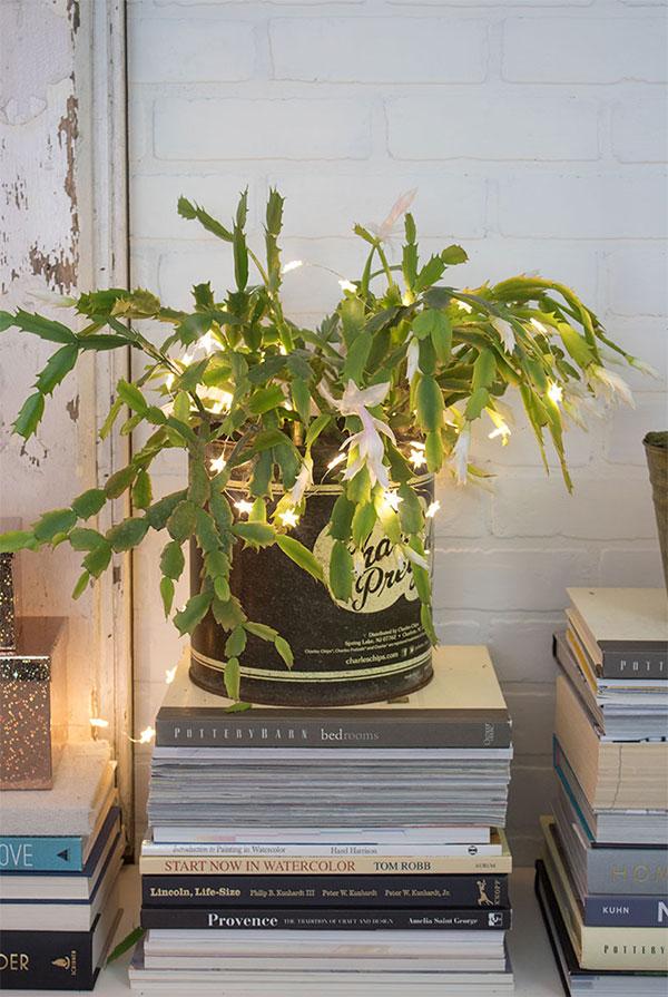 white Christmas cactus, mantel decorating ideas