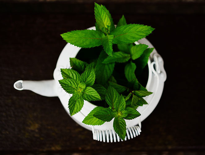 peppermint essential oil benefits for health