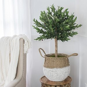 FI-Indoor-plants-and-trees-artificial