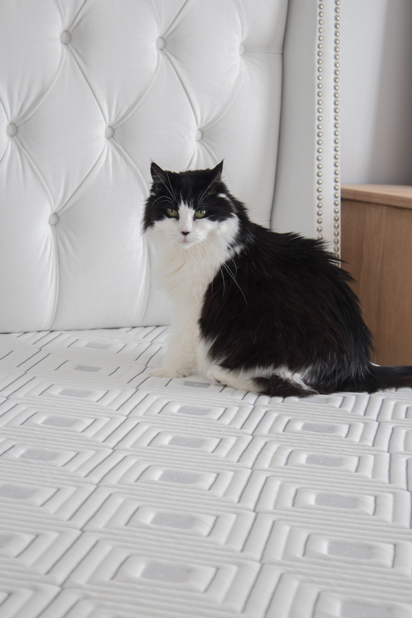 medium to firm mattresses