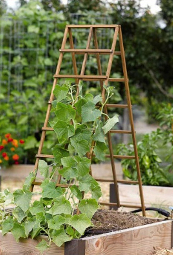 garden trellis tower for vegetables